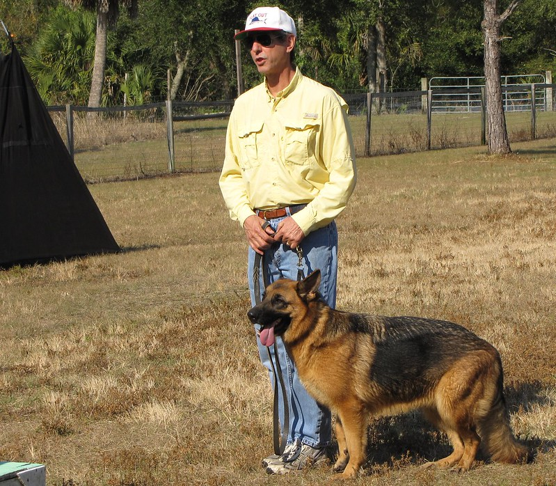 Get a dog training license